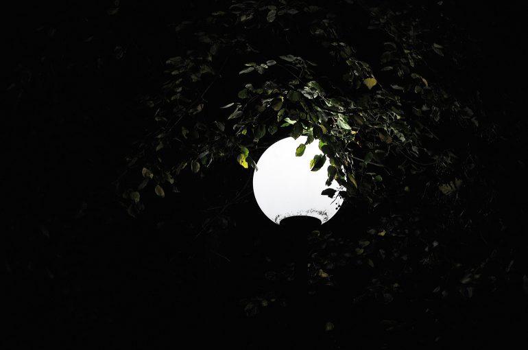 light_before_dark_29