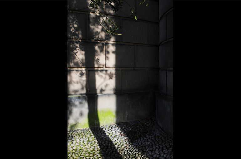 light_before_dark_32