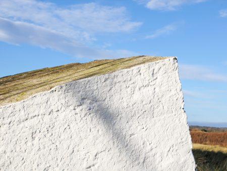Murmur Photograph 10