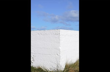 Murmur Photograph 12
